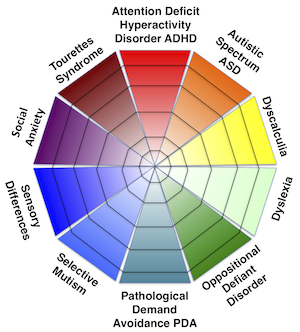 The Spectrum of Diagnoses Diagram