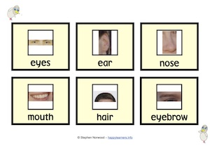Body Parts Picture Vocabulary Cards